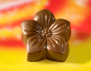 Plain Chocolate Daisy